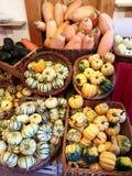 Рынок тыквы Стоковые Изображения