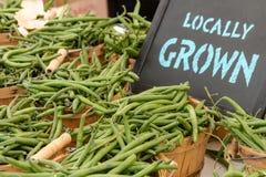 Рынок фермеров Стоковое Фото