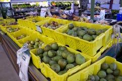 Рынок фермы стоковые фотографии rf