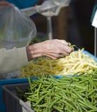 рынок хуторянин фасолей зеленый Стоковые Фотографии RF