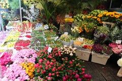 Рынок цветка Амстердама Стоковые Изображения RF
