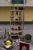 Рынок цветка Киева - первый цветок города справедливый в Киеве, Украине 18-ое сентября 2016 Стоковое Фото