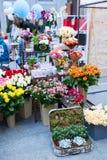 Рынок цветка Киева - первый цветок города справедливый в Киеве, Украине 18-ое сентября 2016 Стоковые Фото
