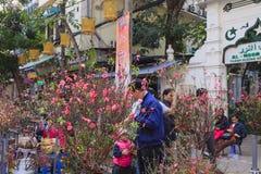 Рынок цветка Luoc вида Цветки персика, Ha Noi Вьетнама Стоковое Фото