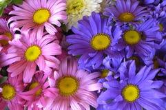 рынок цветков Стоковая Фотография RF