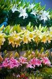 рынок цветков Стоковое Изображение