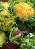 рынок cauliflower Стоковое Изображение