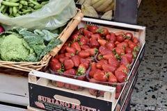 Рынок Volterra Стоковое Изображение RF