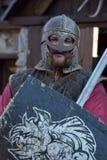 Рыцари Викинги Стоковое Фото