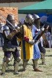 Рыцари Стоковые Изображения