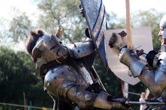 рыцарь встречи Стоковые Изображения