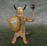 Рыцарь кота с жезлом 2 стоковое фото