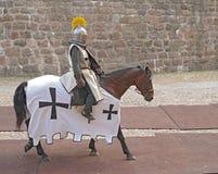 рыцарь лошади панцыря Стоковые Изображения RF