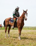 рыцарь лошади Стоковые Изображения RF