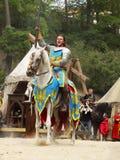 Рыцарь на лошади Стоковое Изображение RF