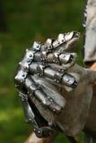рыцарь перчатки Стоковое Изображение RF