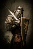 Рыцарь с шпагой и экраном стоковое изображение
