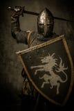 Рыцарь с шпагой и экраном стоковая фотография