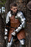 Рыцарь с шпагой около дерева стоковое изображение rf