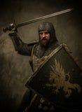 Рыцарь с шпагой стоковая фотография rf