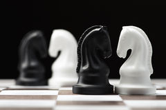 Рыцарь шахмат на доске Стоковое фото RF
