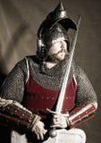 рыцарь стоковые изображения