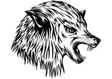 Рычания волка бесплатная иллюстрация