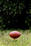 рэгби шарика Стоковые Фотографии RF
