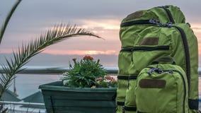 Рюкзаки различных размеров стоят около моря на восходе солнца за облаками Timelapse сток-видео