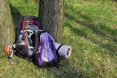 Рюкзак 2 в лесе никто стоковая фотография rf