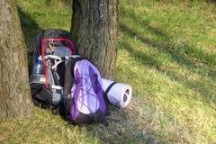 Рюкзак 2 в лесе никто стоковое фото rf
