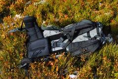 Рюкзак лежит на красивой покрашенной одичалой вегетации Стоковая Фотография RF