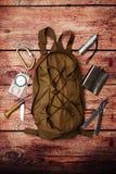 Рюкзак и шестерня для перемещения располагаясь лагерем на деревянной предпосылке стоковые изображения