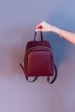 Рюкзак Women's цвета marsala в руке Стоковое Изображение RF