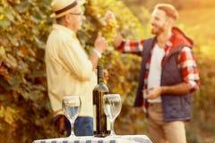 рюмка вина виноградника виноградин бутылки Стоковые Фотографии RF
