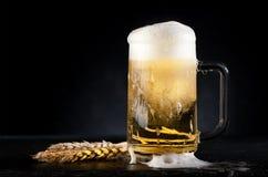 рюмка кружки иллюстрации бутылки пива Стоковая Фотография