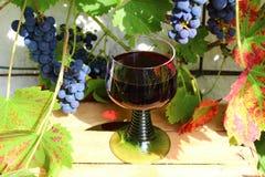 Рюмка с красным вином и виноградинами стоковое фото