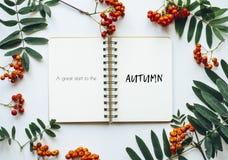 рябина Осень крупный план предпосылки осени красит красный цвет листьев плюща померанцовый Стоковое Изображение