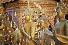 Рядок золота Buddhas стоковые фото