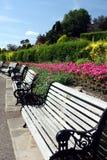 Рядок стендов в summery парке Стоковые Изображения RF