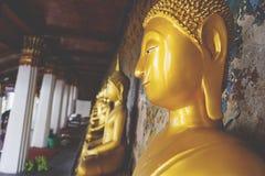 Рядок buddhas Стоковая Фотография