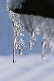 рядок icicle Стоковые Фото
