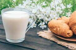 Рядом с круассанами и белыми цветками стеклянная чашка молока стоковые изображения rf