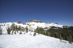 Ряды снежка Сьерры Невады Стоковое фото RF