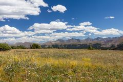 Ряд Tenmile от лугов горы святыни на ветреный день Стоковое фото RF