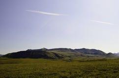 Ряд Аляска ручейков Стоковые Фотографии RF
