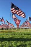 рядки американских флагов Стоковые Фото