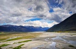 Ряд Craigieburn, Новая Зеландия Стоковая Фотография RF