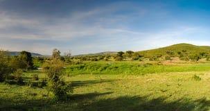 Саванна в национальном заповеднике Massai Mara, Кении стоковая фотография