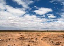 саванна ландшафта Стоковая Фотография